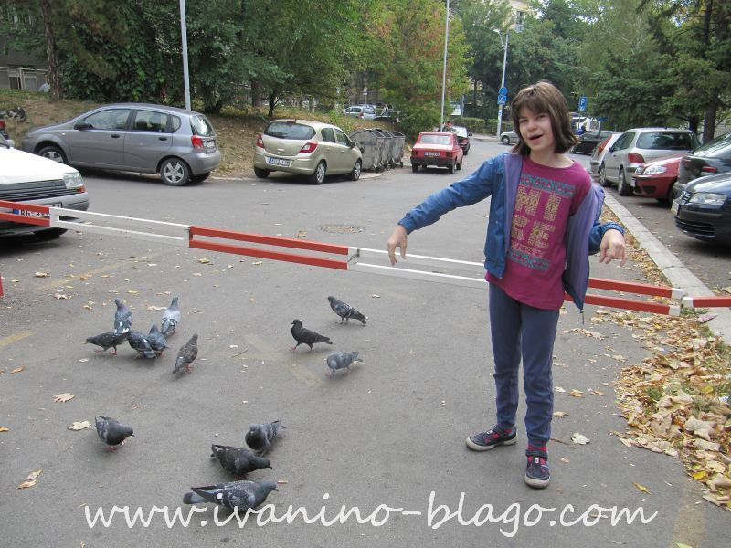 ovde pokazuje da joj pročam šta rade golubovi